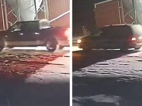 Suspect vehicles