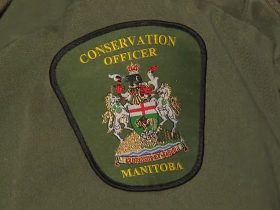 Conservation officer